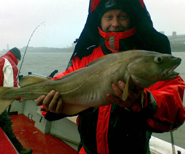 http://www.tuskarcharters.co.uk/media/anglinggall/LEE,S cod.jpg
