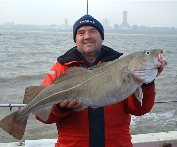http://www.tuskarcharters.co.uk/media/anglinggall/STANS 17.12OZ COD.jpg